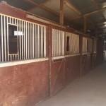 12 Stall Barn