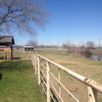 6 Stall Barn Pasure